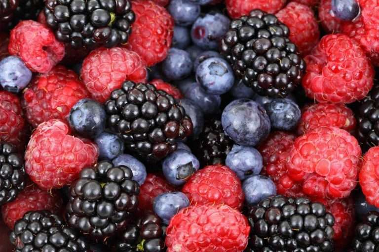 Fighting Inflammation with Antioxidants