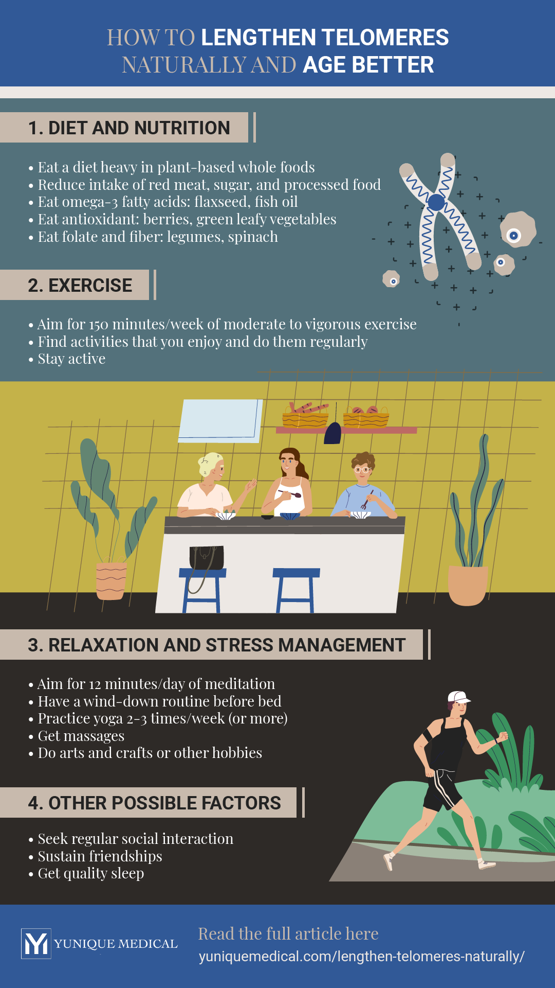 Infographic | YM_infog_howtolengthentelomeresnaturally-01