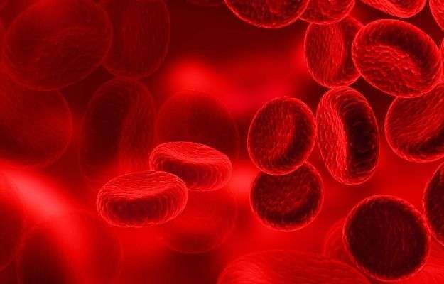 blood cells | Autoimmune Skin Disorders | Peptide Therapy For Autoimmune Skin Disorders