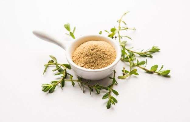 Bacopa monnieri herb plant or Ayurvedic Brahmi plant with powder in a bowl, selective focus | Herbs
