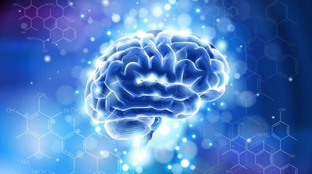 brain-_-formulas-organic-chemistry | Feature | What are Nootropics, and How Can They Benefit Me?