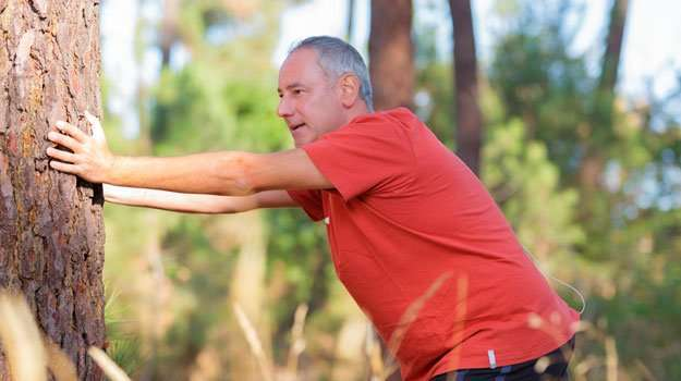 chubby-middle-aged-man-exercising-against-a-tree   The Role of Testosterone in Counteracting Obesity   Testosterone Therapy May Help Obese Men Lose Weight, Studies Show