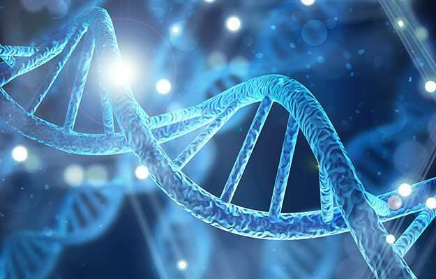 DNA strand   3 Surprising Ways Epigenetics Can Add Years to Your Life